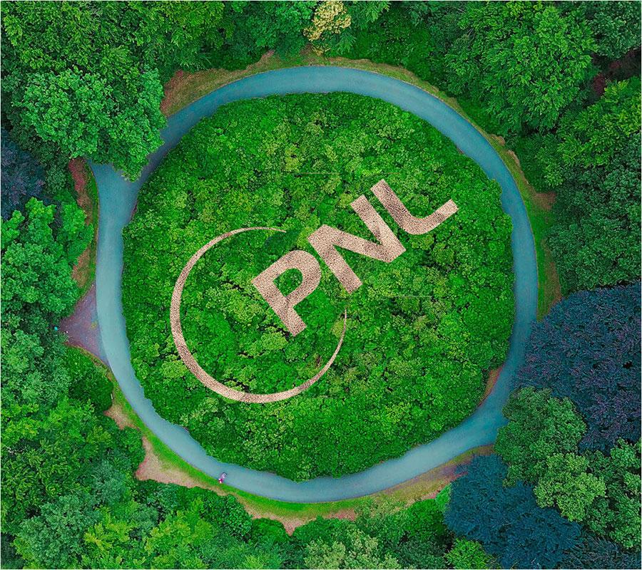 pnl-logo-rung-xanh-web